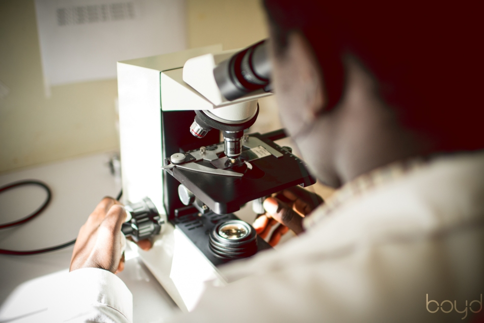 A scientist works on malaria tests.
